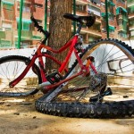 Шансы велосипедиста на жизнь